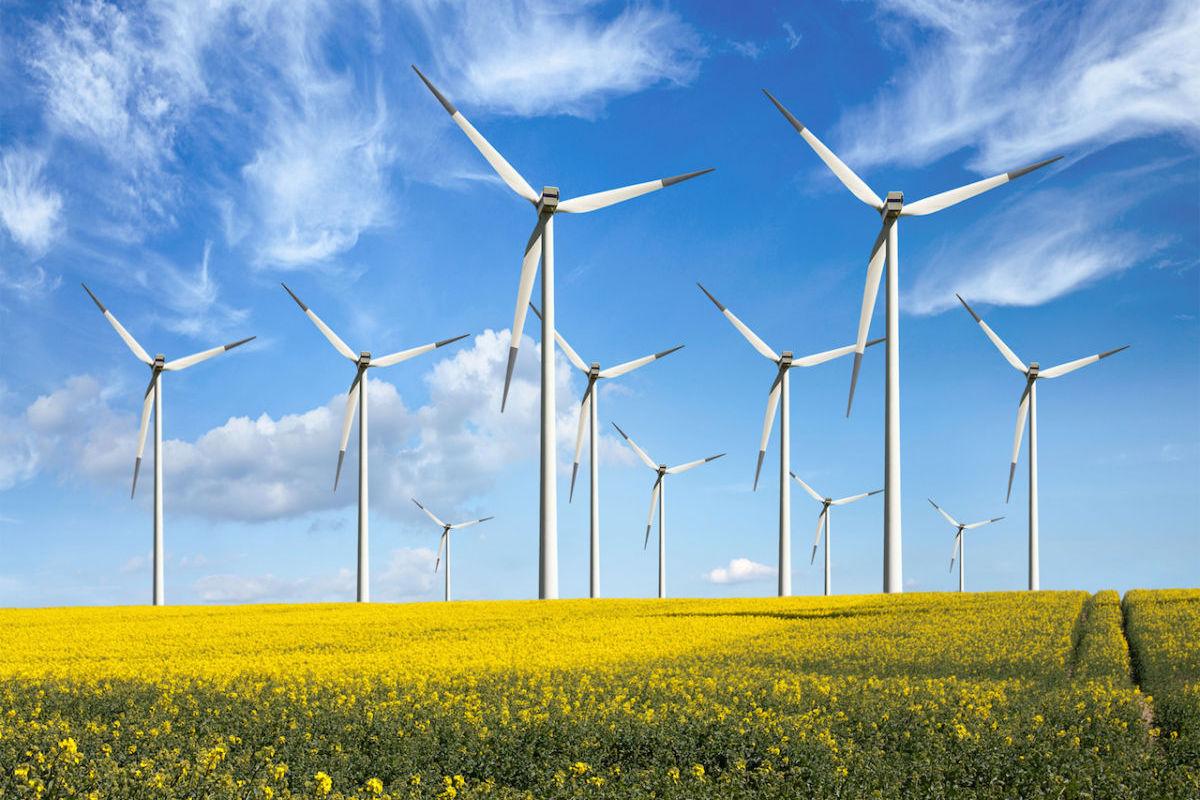 Самая мощная в Европе ветроэлектростанция стоимостью 1 миллиард евро построят в Запорожской области